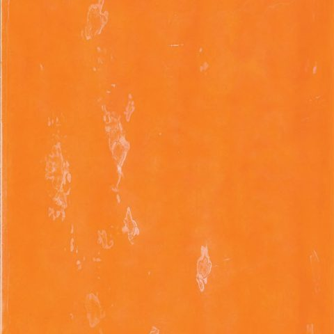 Lively Orange Bohemian-Style Wall Tile